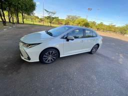 Corolla alts Premium