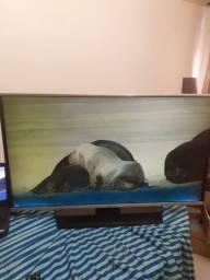Vendo TV LG 43 polegadas smart