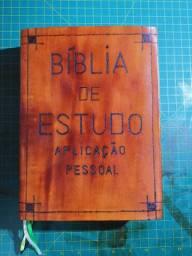 Capa de Bíblias em Couro.