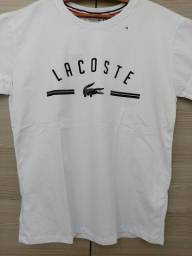 Camisetas de Grife, Tam. M