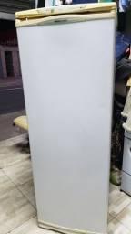 Freezer 220v,  280L só 699,