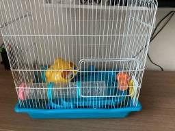 Vende gaiola de hamster
