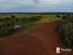 Fazenda na região de Chapada de Areia para agricultura e pecuária