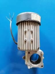 Motor pecinim