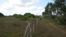 Granja Ceará-Mirim 7.5 Hectares, Escritura Pública, Água Franca, Cercada