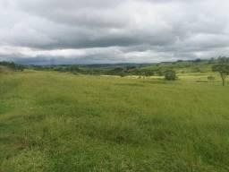 Vendo uma linda fazenda
