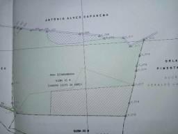 Vendo terreno com hectares 08 hectares situado à 10Km do Centro de Pará de