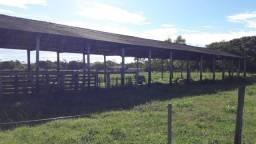 Chácara o cabeça de boi, 50 hectares