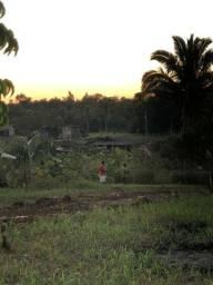 Terreno próximo do Rio Ipixuna