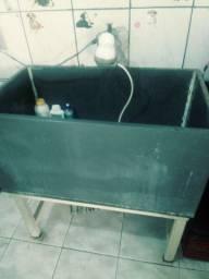 Bacia para banho Pet com chuveiro