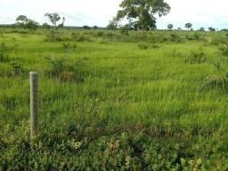 Título do anúncio: Fazenda/Sítio/Chácara para venda com 3500 metros quadrados com 3 quartos