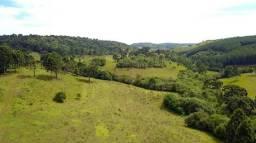 Oportunidade em Lages-sc 57,53 hectares de terra