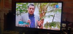 TV   AOC   de plana 32 polegada