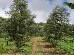 Vendo Sitio em Tamandaré