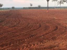 Arrendamento 2800 hectares ? Nova Maringá