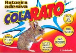 Cola Rato - Ratoeira Adesiva - 1 Cartela