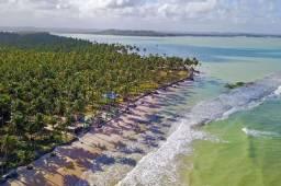 Terreno à beira mar na Praia dos Carneiros | 4.5 Hectar