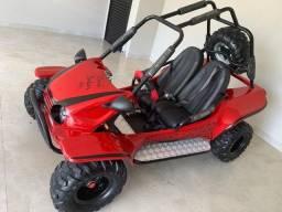 Mini Buggy Fapinha Cross Dakar com partida elétrica Honda 4 tempos
