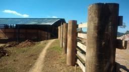 Campo Largo - Poço Artesiano -52 Alqueires - 125 Hectares - 45 Km Curitiba
