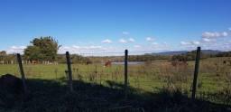 Fazenda 176 hectares / Pecuária