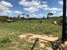Fazenda 100 hectares 50 formada terra legal * WhatsApp