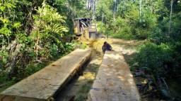 Fazenda em Itaituba ( distrito Morais de Almeida - Pará )