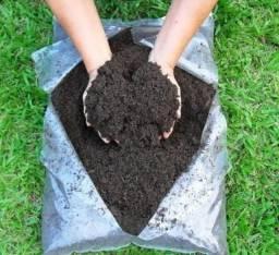 Terra Preta orgânica (Sem agrotóxico)