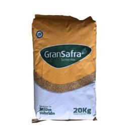 Milho Híbrido Para Silagem 2022 20Kg - Gransafra
