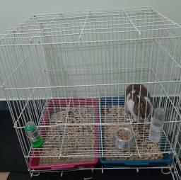 gaiola para coelho usada.