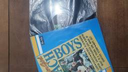 LP The Beast Boys - Surfer Girl