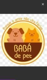 Título do anúncio: Cuidador de cachorros e Gatos