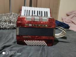 acordeon delicia jr xiv