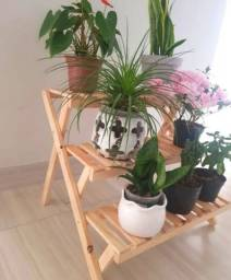 Suporte para plantas suculentas cactos