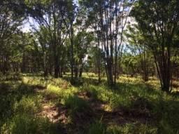 Fazenda Região Avaré - Asfalto e Plana