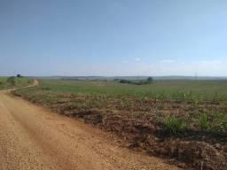 Ótima Fazenda para venda na região de São Carlos, com 100 alqueires, totalmente plana com