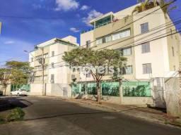 Apartamento à venda com 2 dormitórios em Horto, Belo horizonte cod:88204