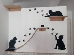 Kit para gatos