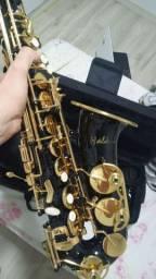 Saxofone Alto Halk (Usado)