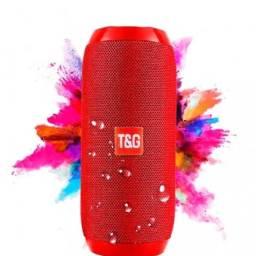 Caixa de som T&G