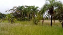 Fazenda a venda em Ribas do Rio Pardo (Dupla Aptidão)