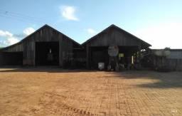 Fazenda 838HA em Florestópolis-PR