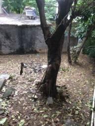 Terreno De Fundo Em Duque De Caxias- 25 de agosto