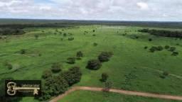 Fazenda Capa de Revista 400 Alqueirão a 150 km Gurupi TO