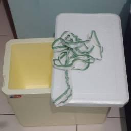 Caixa de Isopor 24L