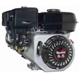 Motor 6.5hp com rabeta 1,5m