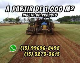 Grama Esmeralda Direto Do Produtor (15)99696-8498