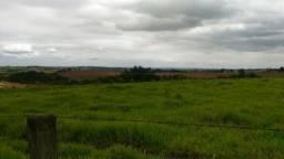 Vende-se 7 alqueires terra roxa em Cesário Lange