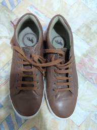 Sapato Acostamento + Camisa Lacoste