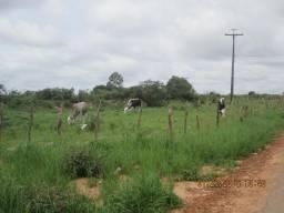 Fazenda alagoinha