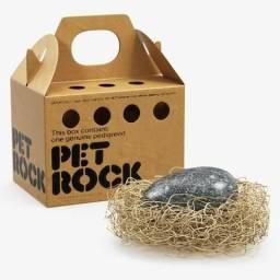 Pet Rock Pedra De Estimação